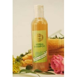 Herbal ( Natural ) Shampoo